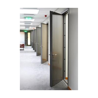 Дверь металлическая одностворчатая ДМ 21-8