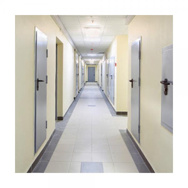 Дверь металлическая одностворчатая ДМ 21-10 - 3